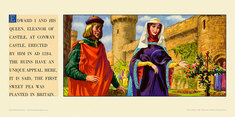 Edward I and Queen, Eleanor of Castile, Conway Castle. by Albert Richard Whitear