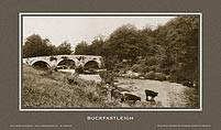 Buckfastleigh [Bridge & River II] - Southern Railway