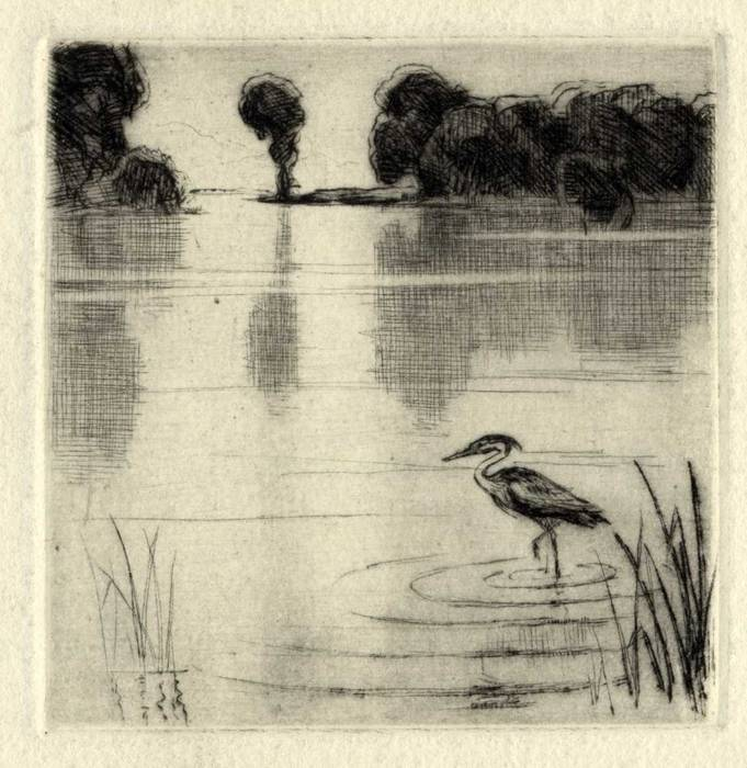STORK IN RIVER, 1913. ORIGINAL ETCHING by CYRIL H BARRAUD